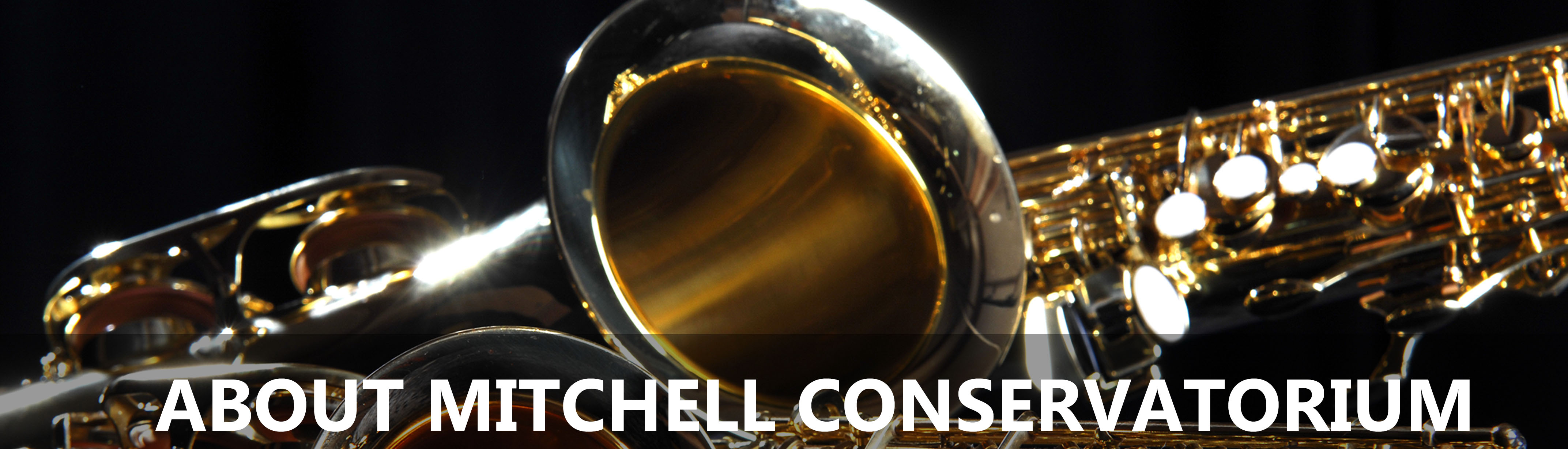 About Mitchell Conservatorium