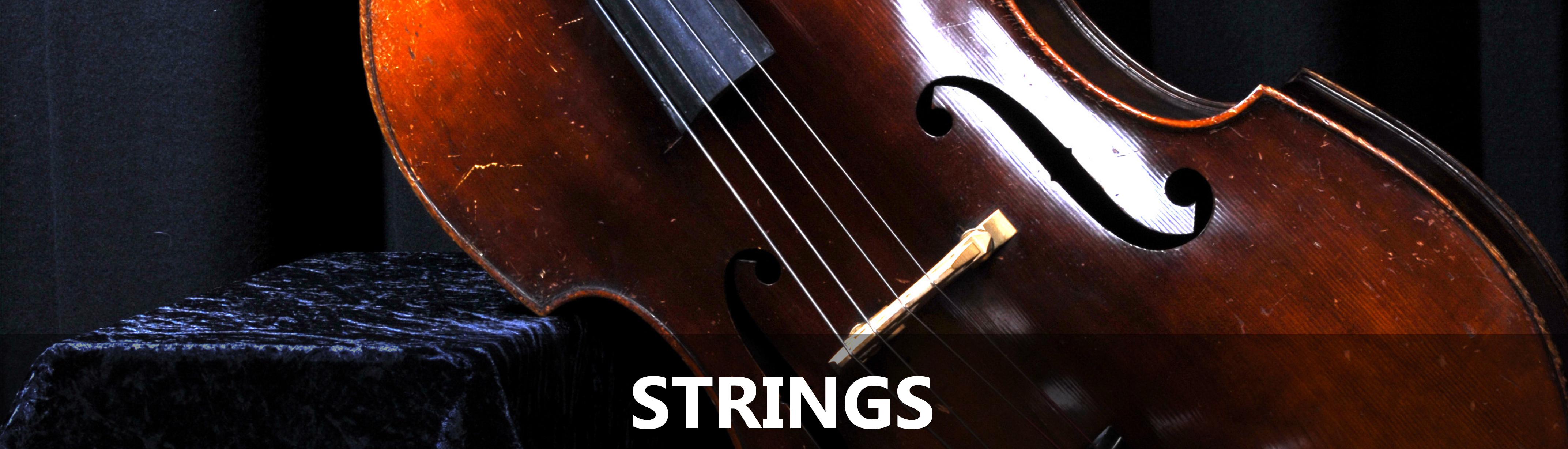 Bathurst String Teachers