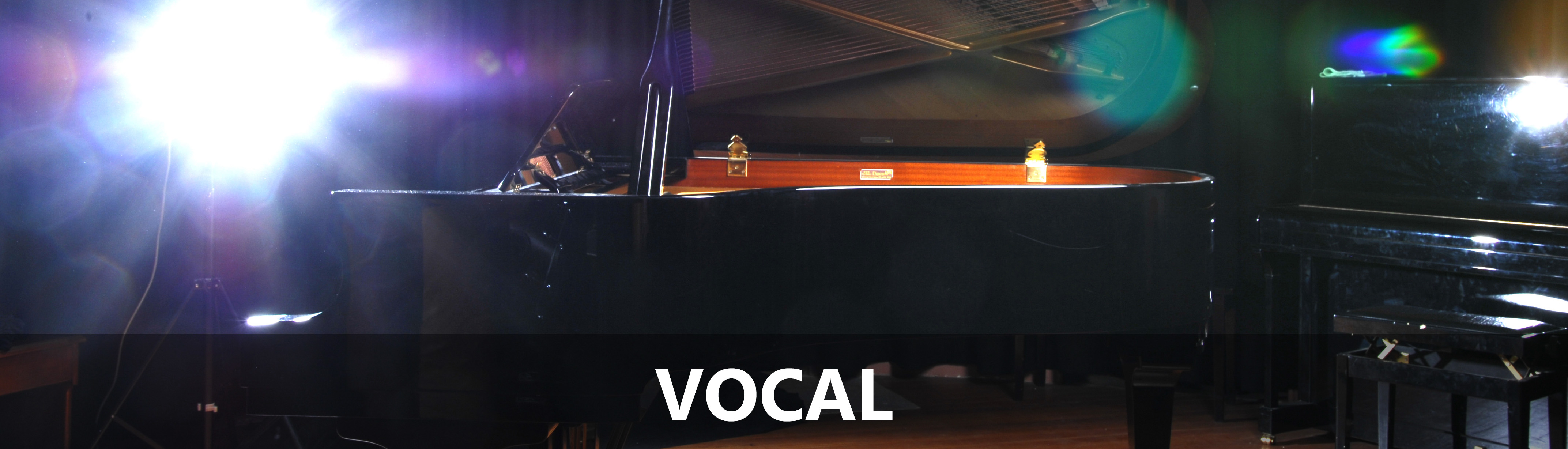 Vocal teachers in Lithgow